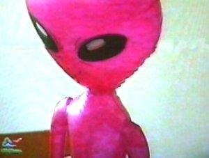 Rosa Alien auf dem Polylux: Aufnahmen zur Polylux-Sendung in Rathenow