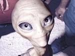 Roadtrip mit Alien: Paul kommt