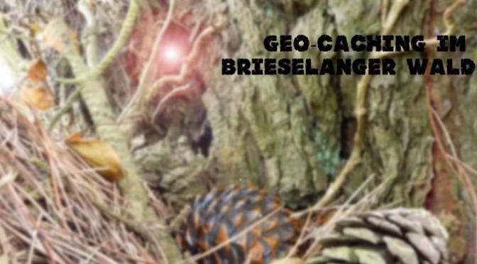 Geocaching: Der Glühwürmchen-Pfad